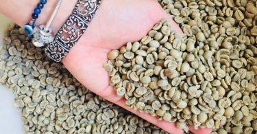 comprar cafe verde